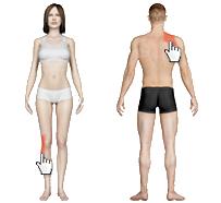 Fysio check